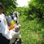 水口谷湿原散策