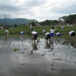 2010大朝小田植え3